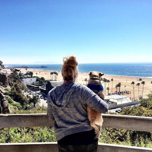Stefanie Michaels_Pup